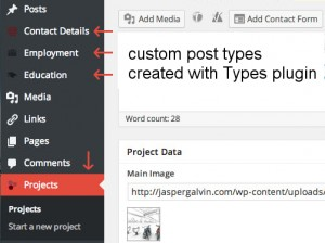 Custom posts types