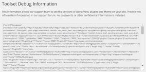 The Toolset Debug Information Page