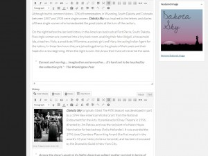 Example 10: Organizing massive post details in your WP Dashboard with WYSIWYG editors.