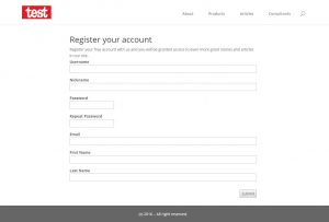 User Form example on the front-end