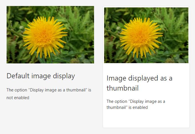 Default vs. thumbnail image display