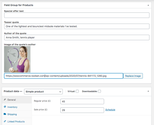 Custom fields in a product edit screen