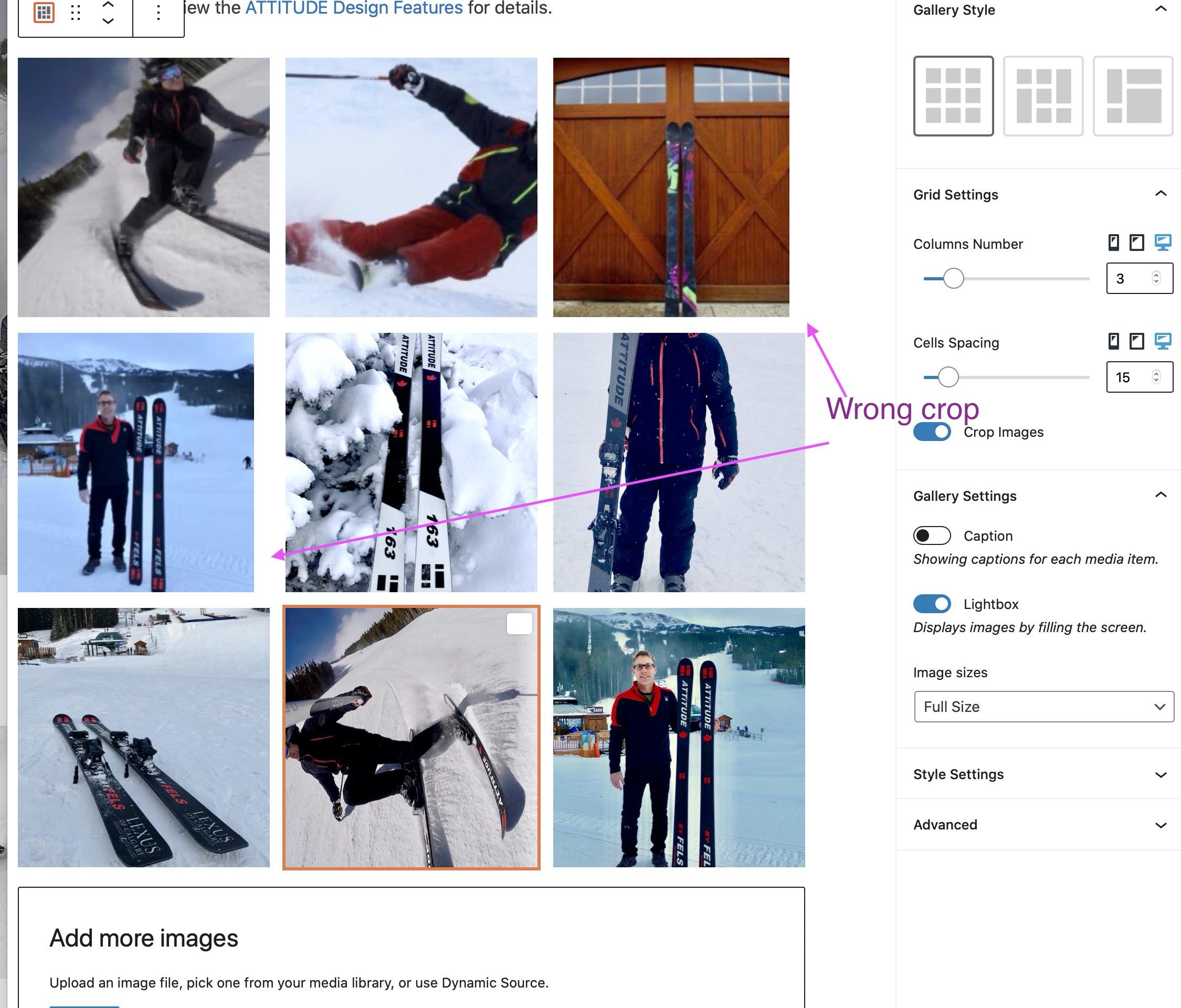 Gallery-Grid-cropped-wrong1.jpg